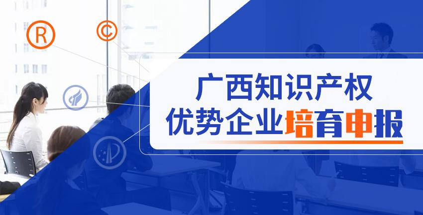广西知识产权优势企业培育申报图1